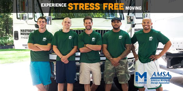 Experience Stress Free Moving